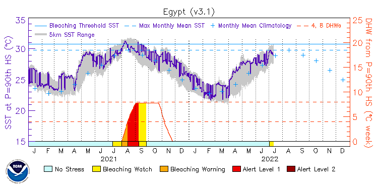 current SST time series